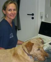 Frau Dr. Depken bei der Ultraschall-Untersuchung eines Hundes
